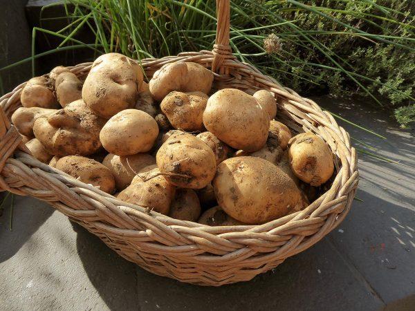 Patatas del bufete